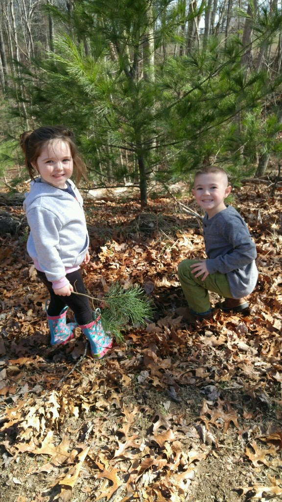 Kids Planting Sapplings